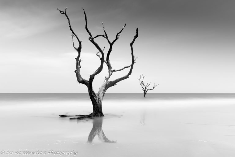 Ivo Kerssemakers, Black and White, Long Exposure, Bulls Island, South Carolina