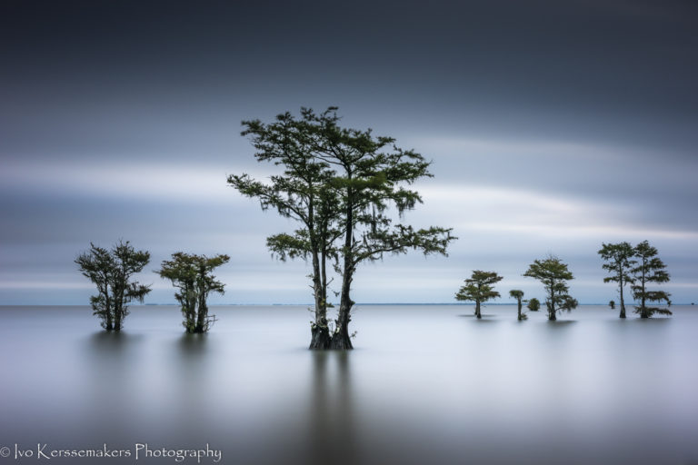 Ivo Kerssemakers, Lake Moultie, South Carolina, Long Exposure, Cypress Trees